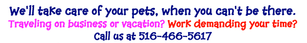 Long Island NY Pet Sitters