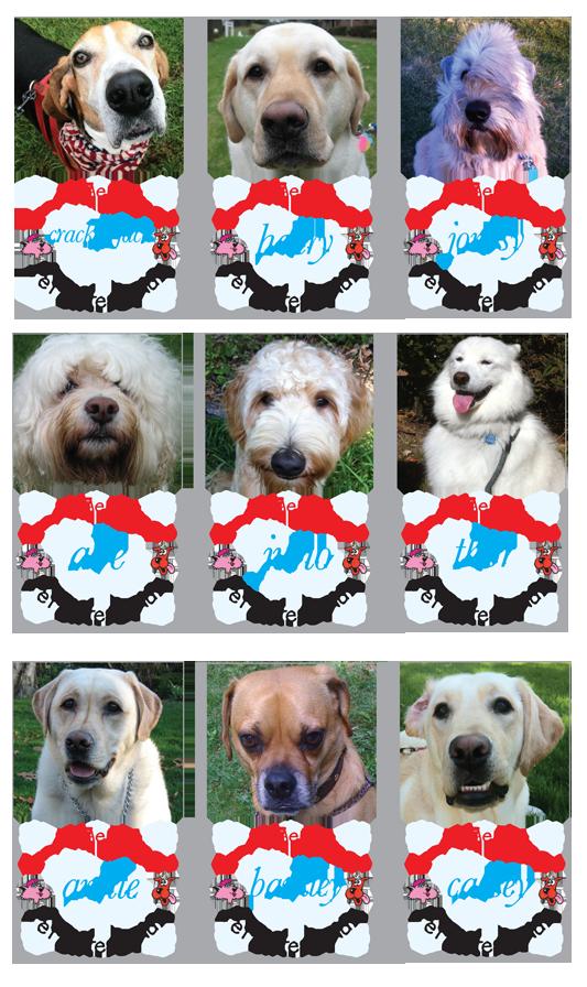 Pet Sitting Services, Long Island, NY, Dog Walking, Pet Sitting. Pet Sitters Club
